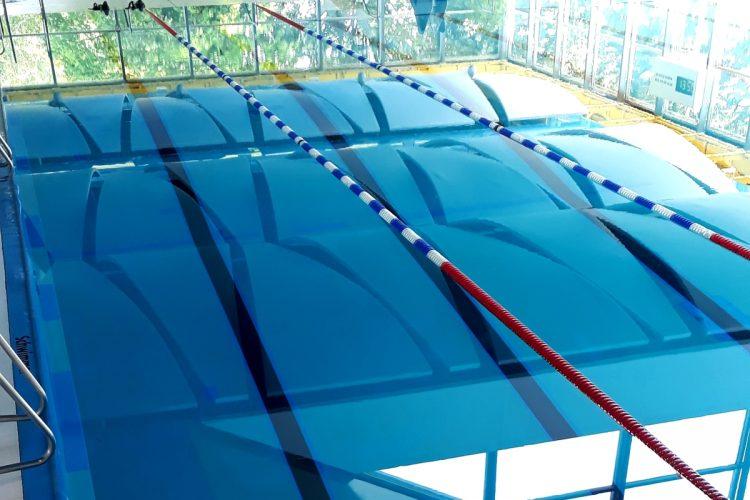 Feel the Flow - Lauf- und Schwimmtechnik